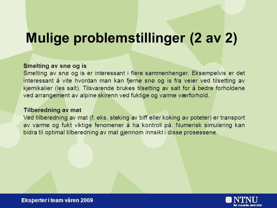 Eksperter i team våren 2009 Mulige problemstillinger (2 av 2) Smelting av snø og is Smelting av snø og is er interessant i flere sammenhenger.