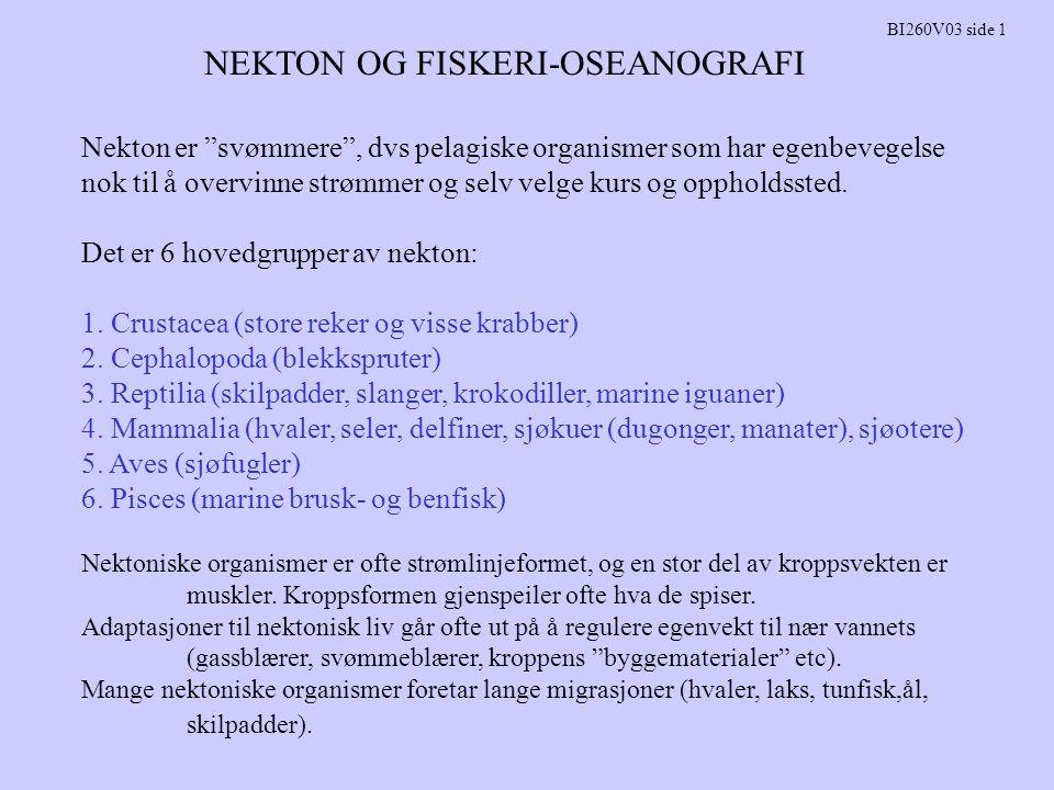 NEKTON OG FISKERI-OSEANOGRAFI BI260V03 side 26