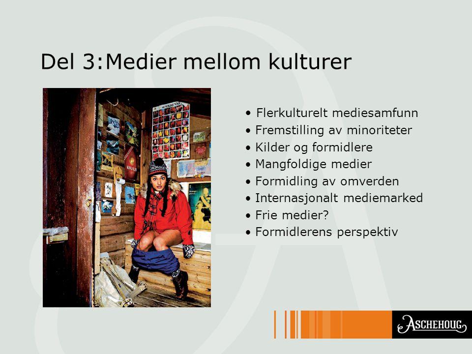 Del 3:Medier mellom kulturer Flerkulturelt mediesamfunn Fremstilling av minoriteter Kilder og formidlere Mangfoldige medier Formidling av omverden Internasjonalt mediemarked Frie medier.