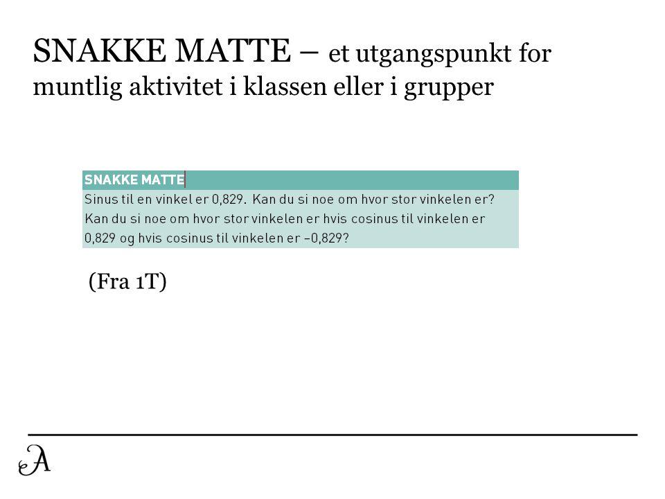 SNAKKE MATTE – et utgangspunkt for muntlig aktivitet i klassen eller i grupper (Fra 1T)