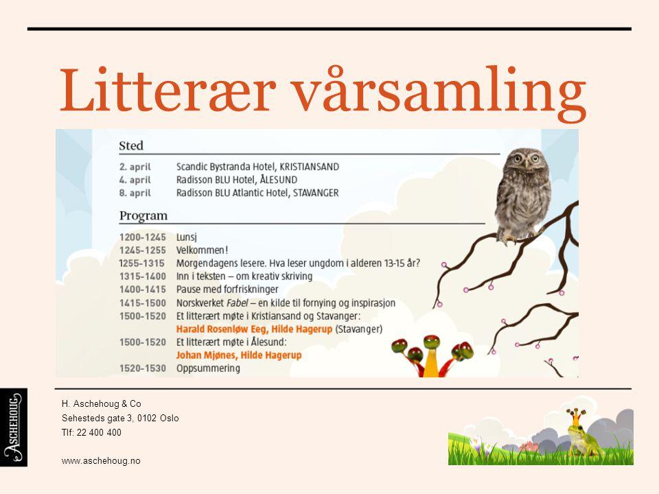 Ann Helen Hatlestad, Litteraturformidler, STAVANGER KULTURHUS Hva leser ungdom i alderen 13 – 15 år?