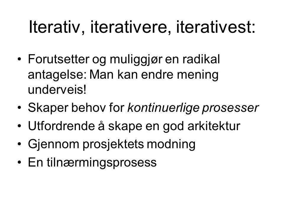 Iterativ, iterativere, iterativest: Forutsetter og muliggjør en radikal antagelse: Man kan endre mening underveis.
