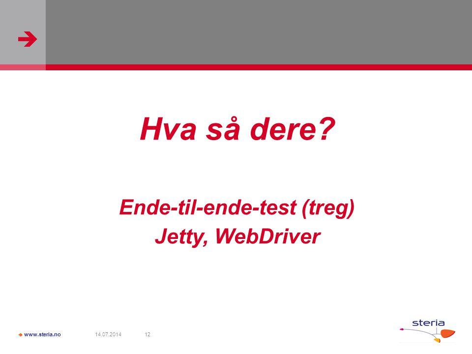  www.steria.no 14.07.201412 Hva så dere? Ende-til-ende-test (treg) Jetty, WebDriver