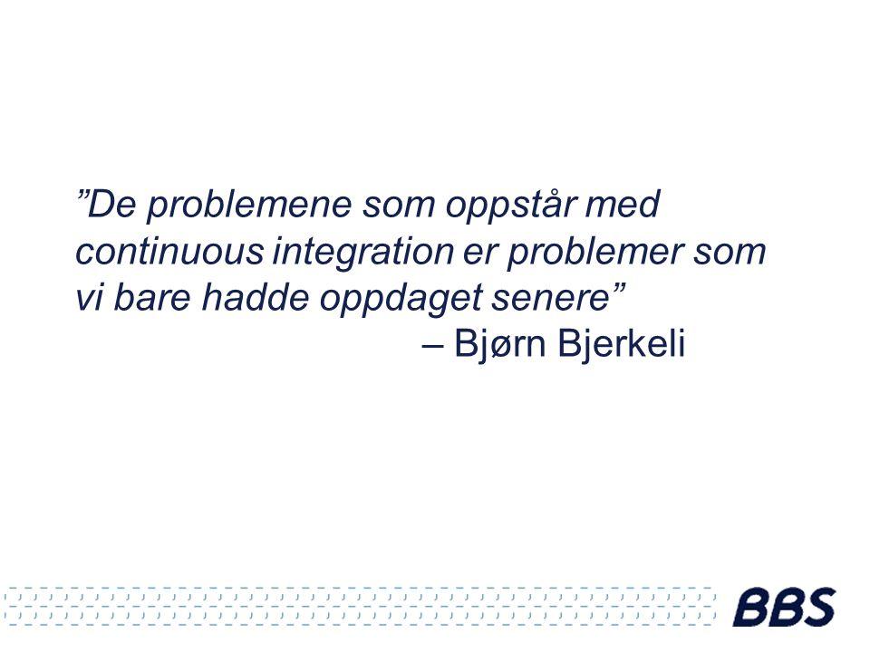 De problemene som oppstår med continuous integration er problemer som vi bare hadde oppdaget senere – Bjørn Bjerkeli