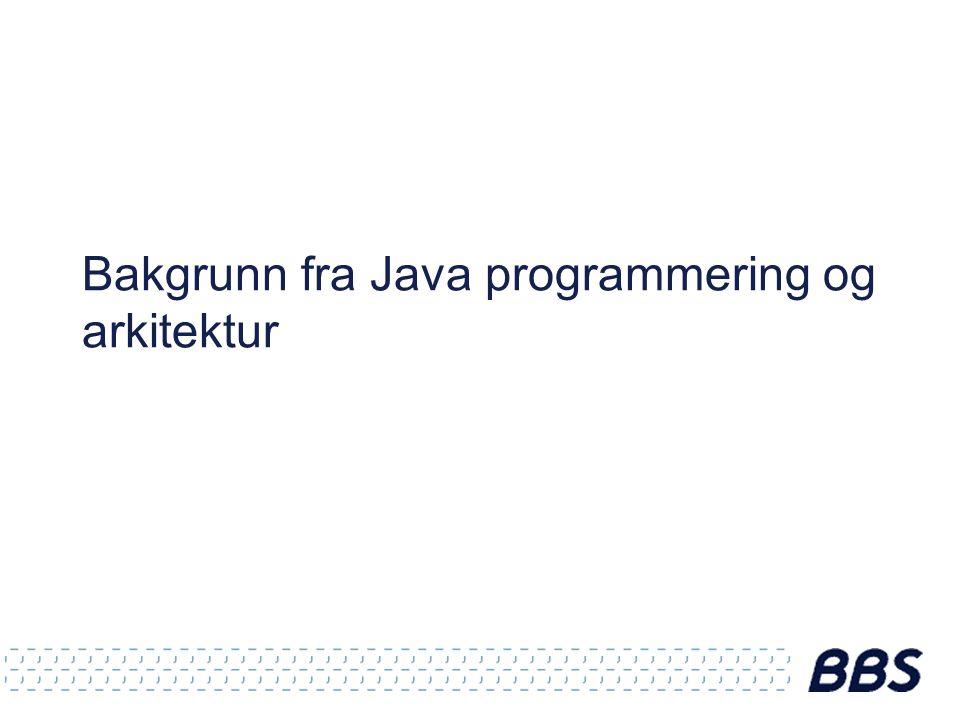 Bakgrunn fra Java programmering og arkitektur