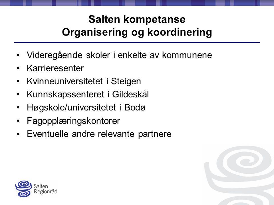 Salten kompetanse Organisering og koordinering Videregående skoler i enkelte av kommunene Karrieresenter Kvinneuniversitetet i Steigen Kunnskapssenteret i Gildeskål Høgskole/universitetet i Bodø Fagopplæringskontorer Eventuelle andre relevante partnere