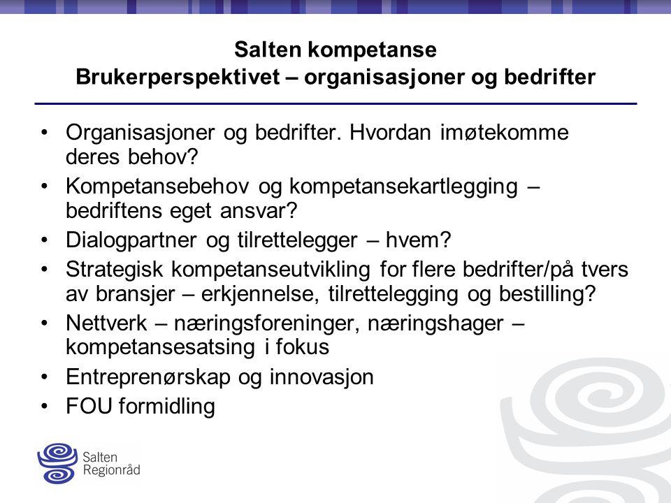 Salten kompetanse Brukerperspektivet – organisasjoner og bedrifter Organisasjoner og bedrifter.