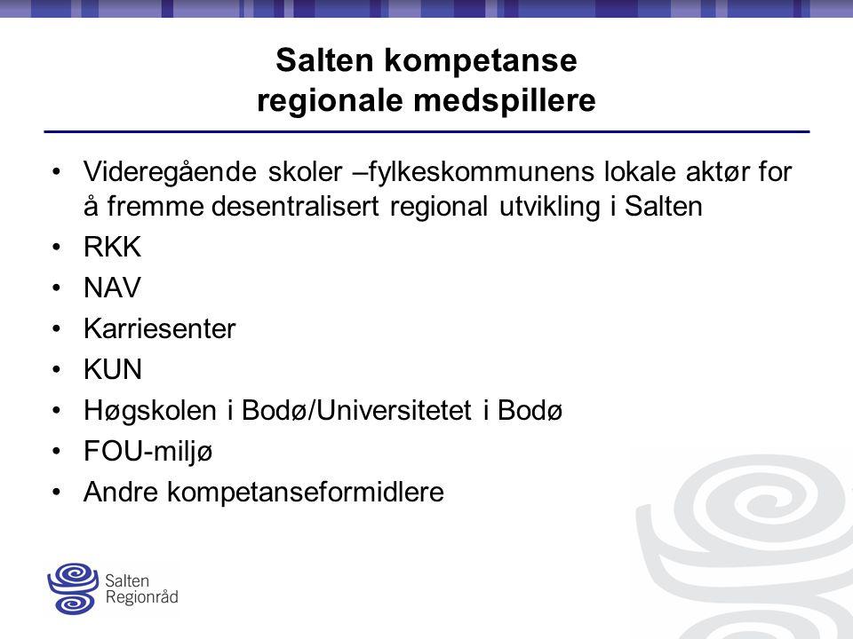 Salten kompetanse regionale medspillere Videregående skoler –fylkeskommunens lokale aktør for å fremme desentralisert regional utvikling i Salten RKK NAV Karriesenter KUN Høgskolen i Bodø/Universitetet i Bodø FOU-miljø Andre kompetanseformidlere