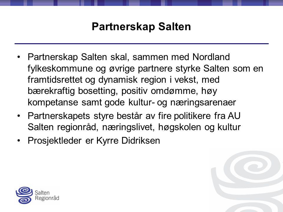 Partnerskap Salten Partnerskap Salten skal, sammen med Nordland fylkeskommune og øvrige partnere styrke Salten som en framtidsrettet og dynamisk region i vekst, med bærekraftig bosetting, positiv omdømme, høy kompetanse samt gode kultur- og næringsarenaer Partnerskapets styre består av fire politikere fra AU Salten regionråd, næringslivet, høgskolen og kultur Prosjektleder er Kyrre Didriksen