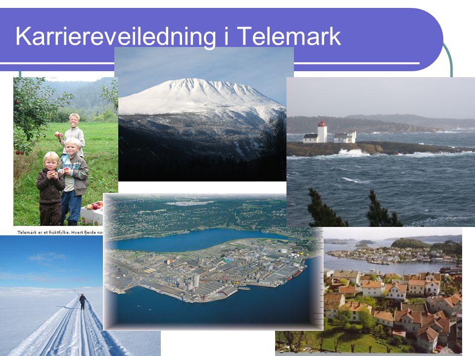 Karriereveiledning i Telemark