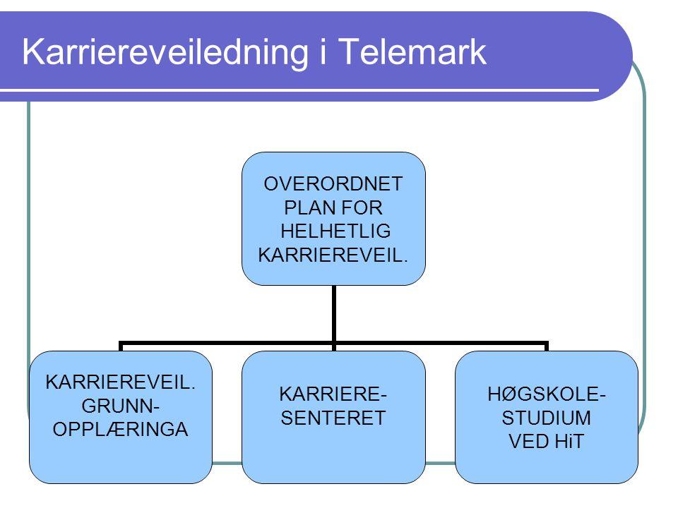 Karriereveiledning i Telemark OVERORDNET PLAN FOR HELHETLIG KARRIEREVEIL. GRUNN- OPPLÆRINGA KARRIERE- SENTERET HØGSKOLE- STUDIUM VED HiT