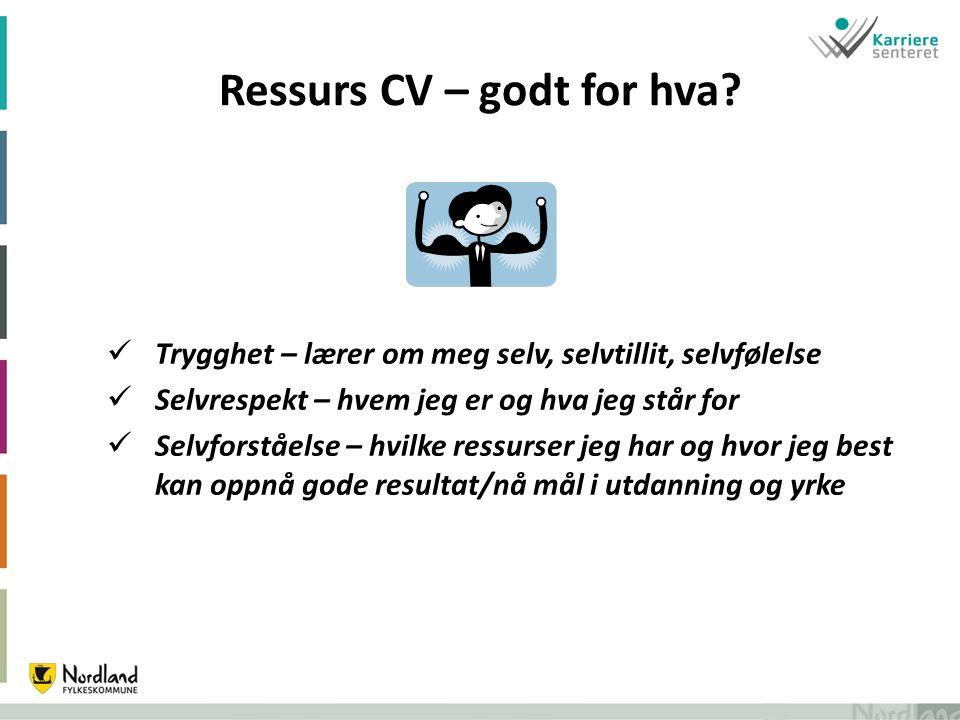 Ressurs CV – godt for hva.