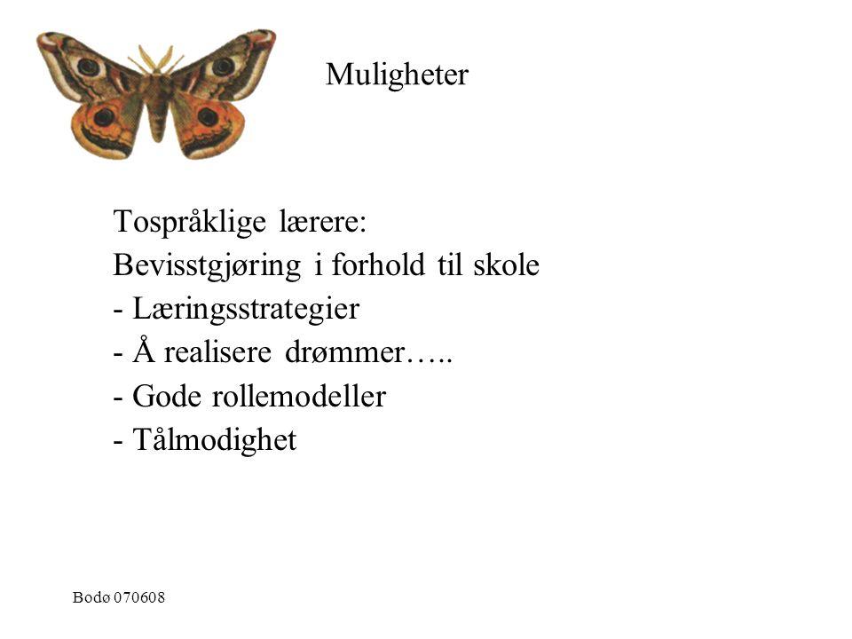 Bodø 070608 Tospråklige lærere: Bevisstgjøring i forhold til skole - Læringsstrategier - Å realisere drømmer….. - Gode rollemodeller - Tålmodighet Mul