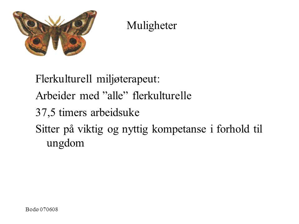 """Bodø 070608 Flerkulturell miljøterapeut: Arbeider med """"alle"""" flerkulturelle 37,5 timers arbeidsuke Sitter på viktig og nyttig kompetanse i forhold til"""