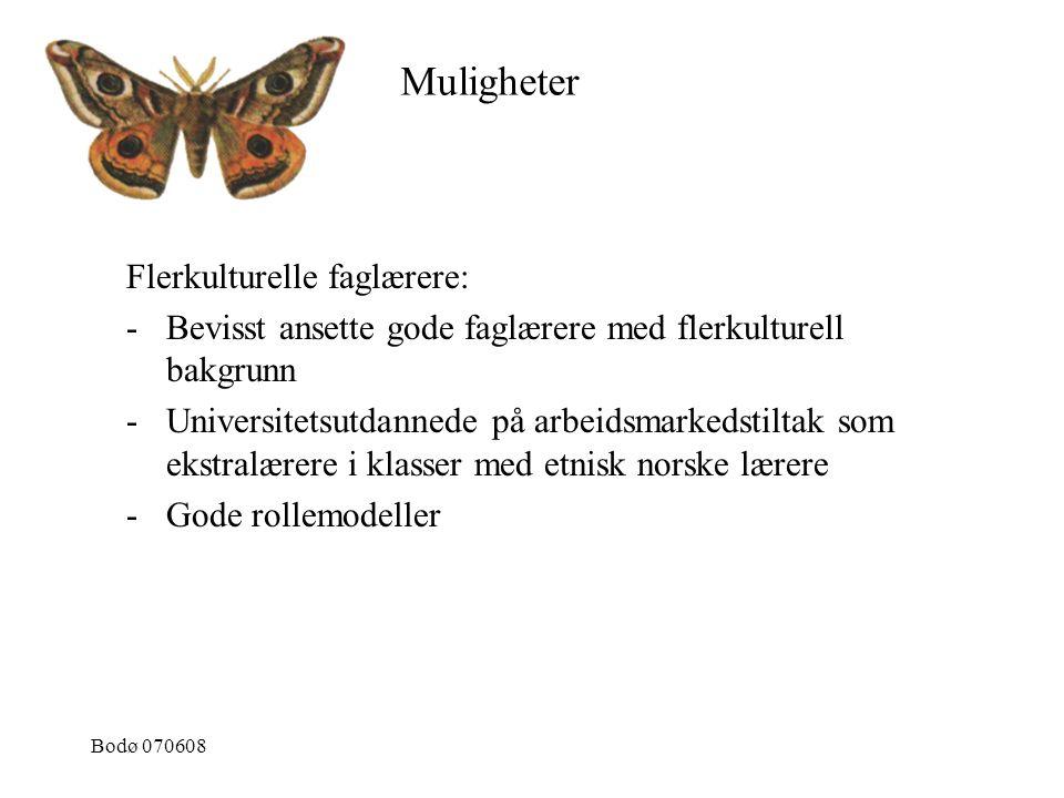 Bodø 070608 Flerkulturelle faglærere: -Bevisst ansette gode faglærere med flerkulturell bakgrunn -Universitetsutdannede på arbeidsmarkedstiltak som ek