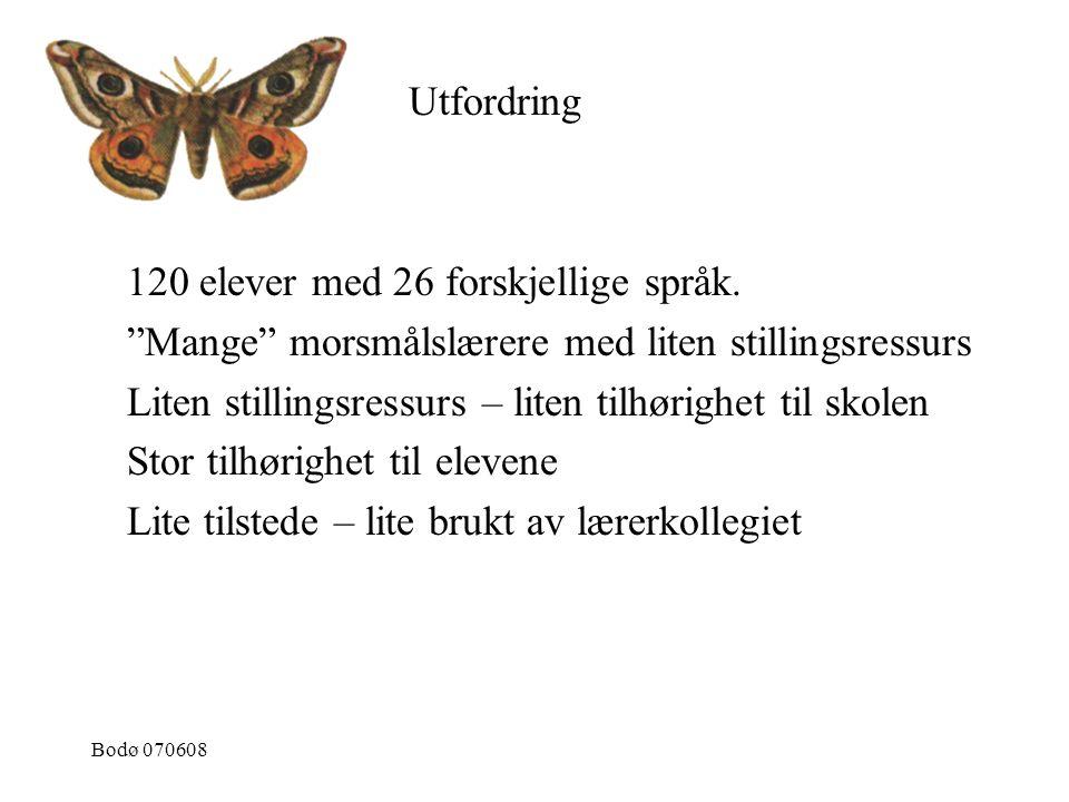"""Bodø 070608 120 elever med 26 forskjellige språk. """"Mange"""" morsmålslærere med liten stillingsressurs Liten stillingsressurs – liten tilhørighet til sko"""