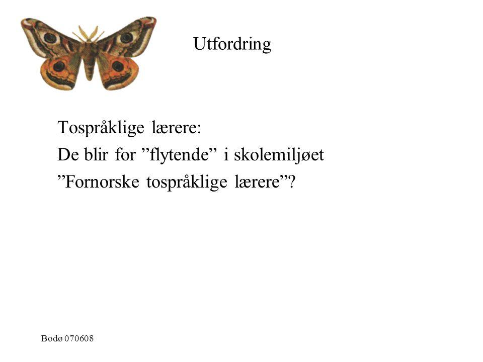 """Bodø 070608 Tospråklige lærere: De blir for """"flytende"""" i skolemiljøet """"Fornorske tospråklige lærere""""? Utfordring"""