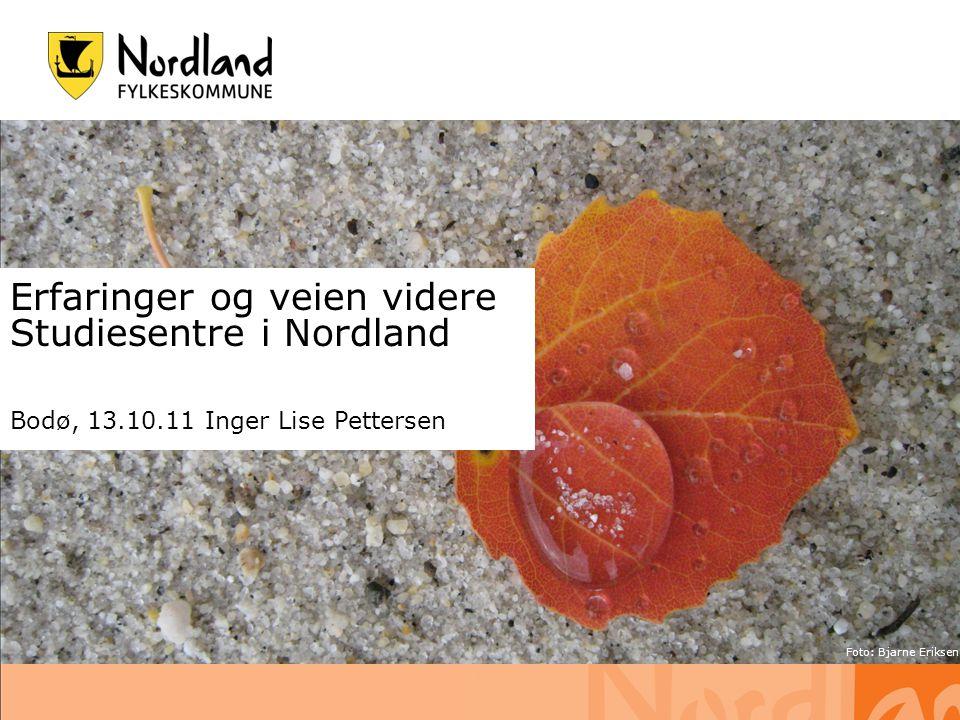14.07.2014 s. 1 Erfaringer og veien videre Studiesentre i Nordland Bodø, 13.10.11 Inger Lise Pettersen Foto: Bjarne Eriksen