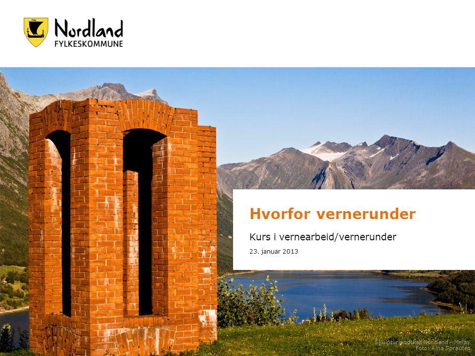 Hvorfor vernerunder Kurs i vernearbeid/vernerunder 23. januar 2013 Skulpturlandskap Nordland – Meløy Foto: Aina Sprauten