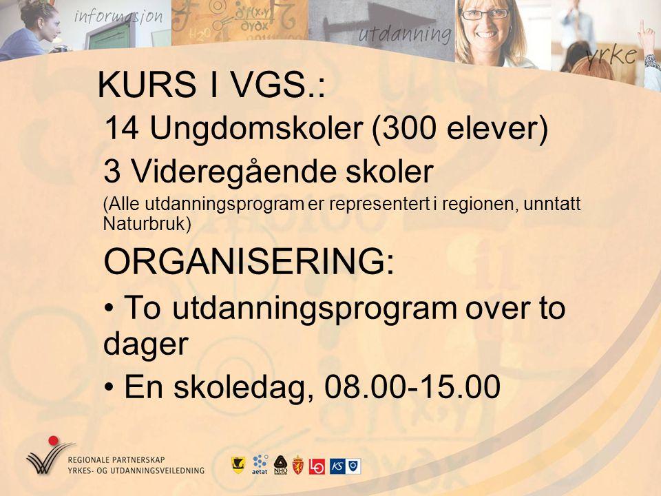 KURS I VGS.: 14 Ungdomskoler (300 elever) 3 Videregående skoler (Alle utdanningsprogram er representert i regionen, unntatt Naturbruk) ORGANISERING: T