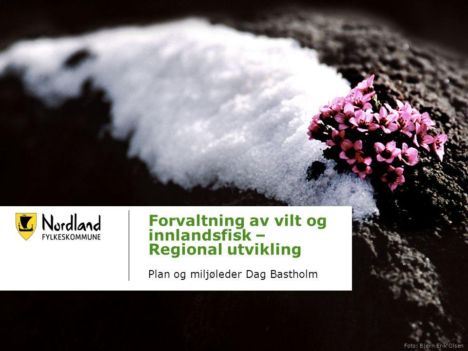 Forvaltning av vilt og innlandsfisk – Regional utvikling Plan og miljøleder Dag Bastholm Dato Foto: Bjørn Erik Olsen