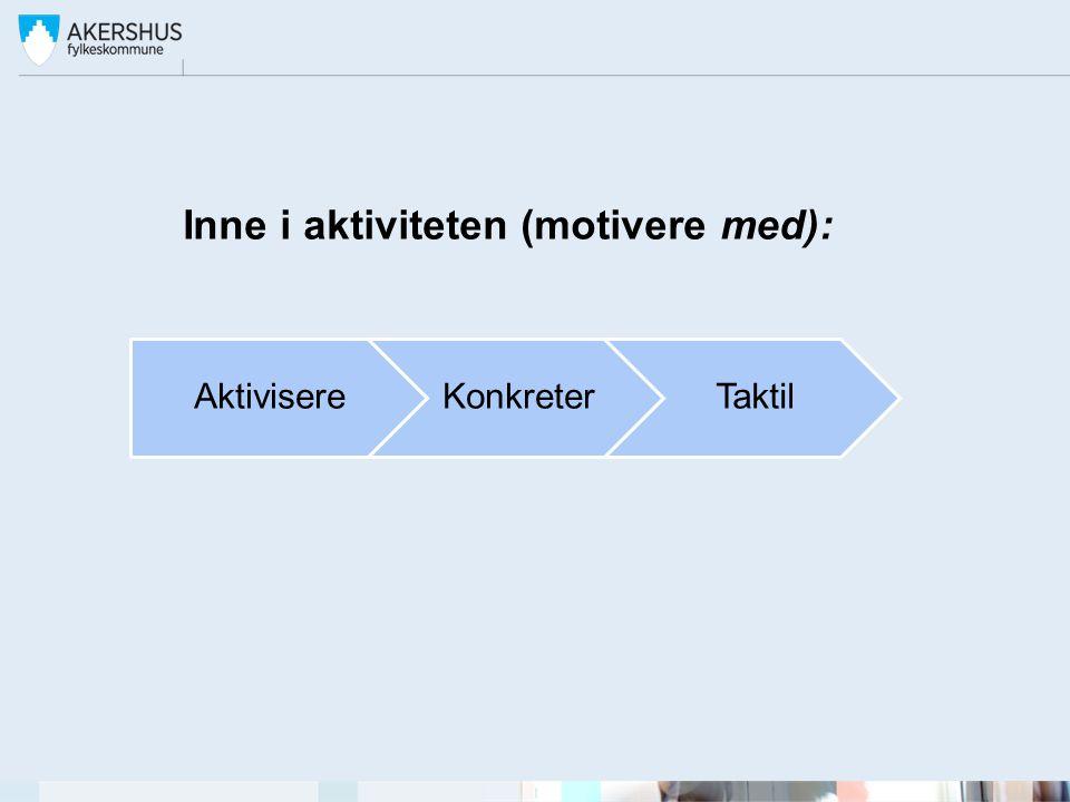 Inne i aktiviteten (motivere med): AktivisereKonkreterTaktil