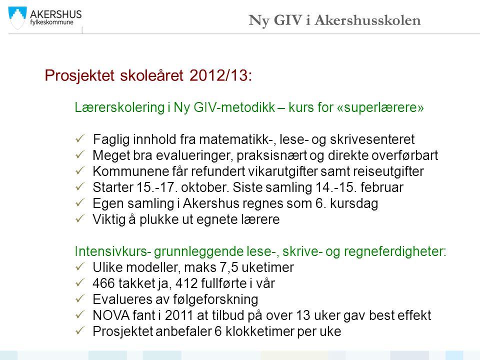 Prosjektet skoleåret 2012/13: Lærerskolering i Ny GIV-metodikk – kurs for «superlærere» Faglig innhold fra matematikk-, lese- og skrivesenteret Meget