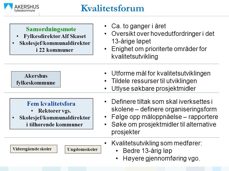 Videregående skoler Ungdomsskoler Samordningsmøte Fylkesdirektør Alf Skaset Skolesjef/kommunaldirektør i 22 kommuner Ca.