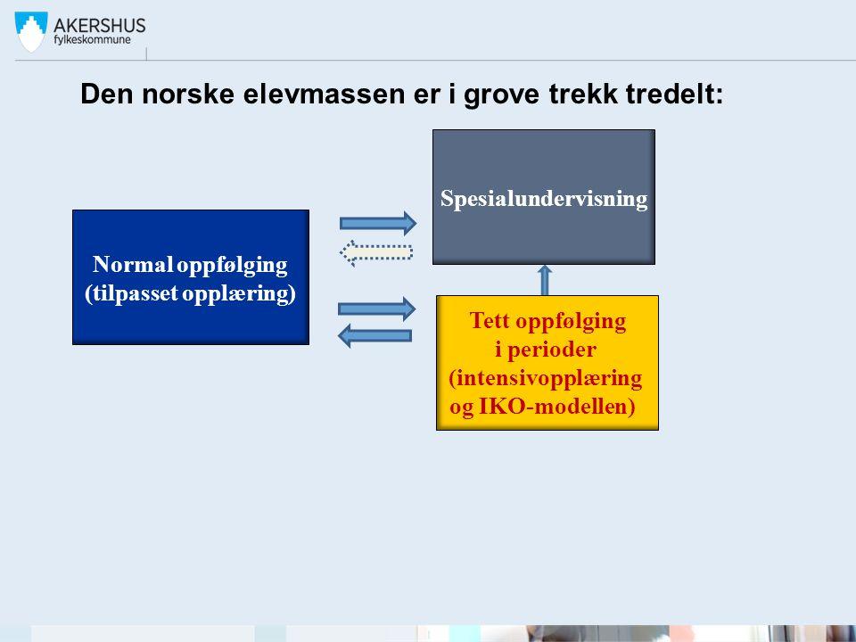 Den norske elevmassen er i grove trekk tredelt: Normal oppfølging (tilpasset opplæring) Spesialundervisning Tett oppfølging i perioder (intensivopplæring og IKO-modellen)