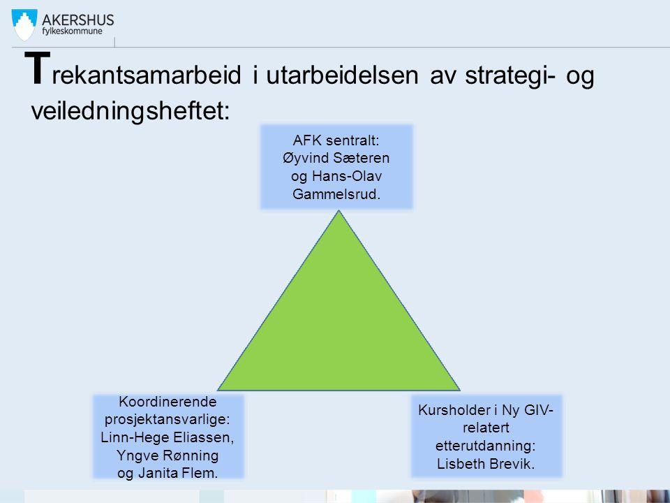 T rekantsamarbeid i utarbeidelsen av strategi- og veiledningsheftet: Koordinerende prosjektansvarlige: Linn-Hege Eliassen, Yngve Rønning og Janita Fle