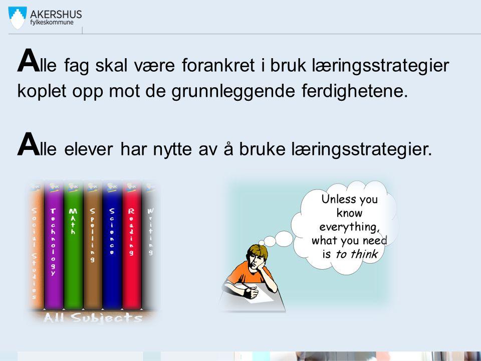T rekantsamarbeid i utarbeidelsen av strategi- og veiledningsheftet: Koordinerende prosjektansvarlige: Linn-Hege Eliassen, Yngve Rønning og Janita Flem.