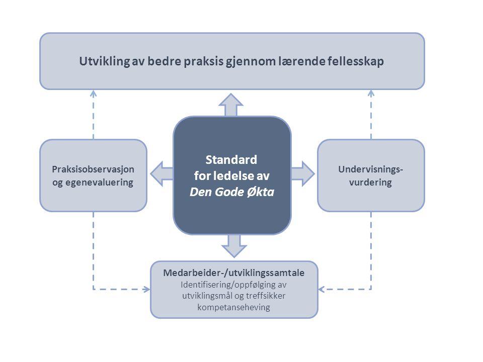 Standard for ledelse av Den Gode Økta Undervisnings- vurdering Praksisobservasjon og egenevaluering Utvikling av bedre praksis gjennom lærende fellesskap Medarbeider-/utviklingssamtale Identifisering/oppfølging av utviklingsmål og treffsikker kompetanseheving