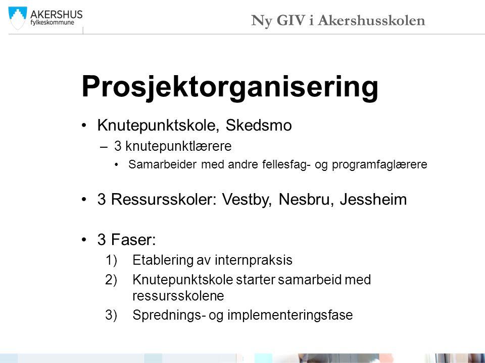 Prosjektorganisering Knutepunktskole, Skedsmo –3 knutepunktlærere Samarbeider med andre fellesfag- og programfaglærere 3 Ressursskoler: Vestby, Nesbru