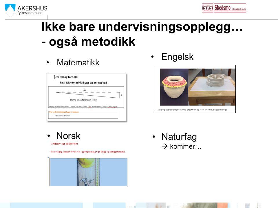 Ikke bare undervisningsopplegg… - også metodikk Matematikk Engelsk Norsk Naturfag  kommer…