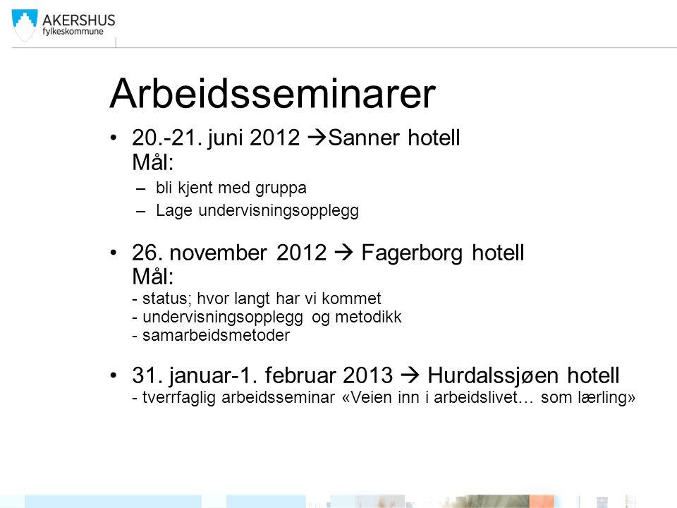 Arbeidsseminarer 20.-21. juni 2012  Sanner hotell Mål: –bli kjent med gruppa –Lage undervisningsopplegg 26. november 2012  Fagerborg hotell Mål: - s