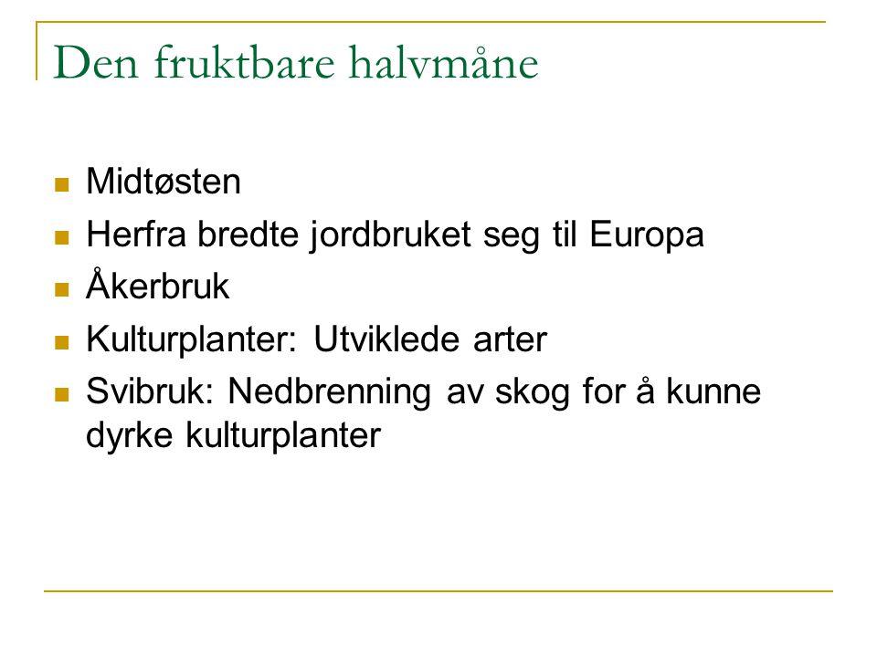 Den fruktbare halvmåne Midtøsten Herfra bredte jordbruket seg til Europa Åkerbruk Kulturplanter: Utviklede arter Svibruk: Nedbrenning av skog for å ku