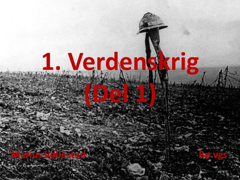 1. Verdenskrig (Del 1) Marius Vøllestad Bø vgs