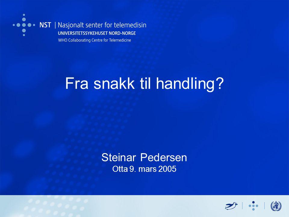 Fra snakk til handling? Steinar Pedersen Otta 9. mars 2005