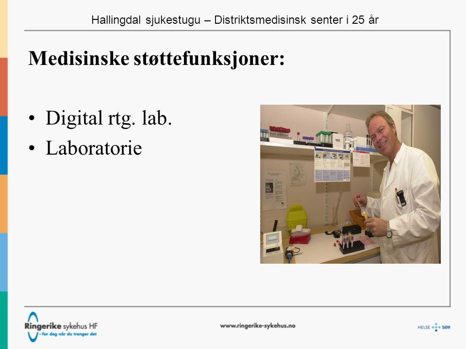 Hallingdal sjukestugu – Distriktsmedisinsk senter i 25 år Medisinske støttefunksjoner: Digital rtg.