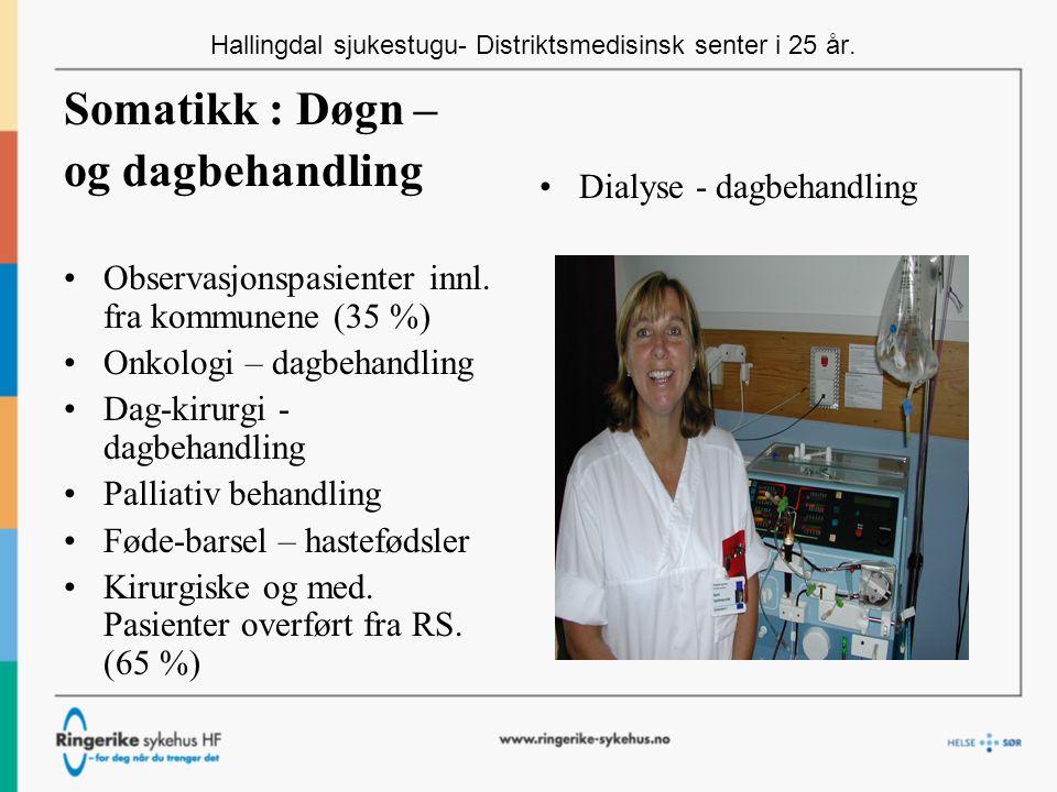 Hallingdal sjukestugu- Distriktsmedisinsk senter i 25 år.