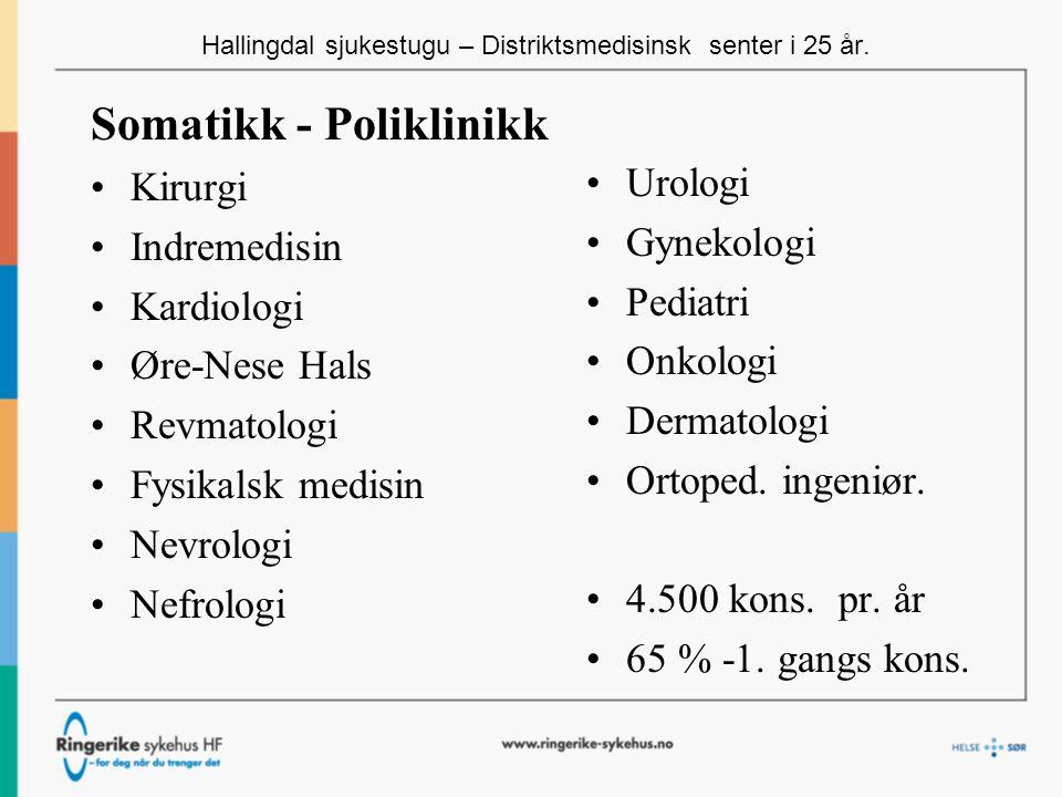 Hallingdal sjukestugu – Distriktsmedisinsk senter i 25 år.