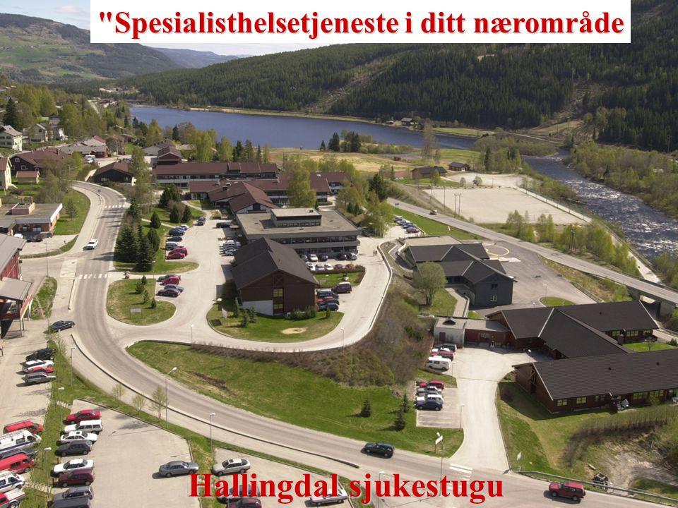 Hallingdal sjukestugu – Distriktsmedisinsk senter i 25 år Historikk – etablering: 1968 – Ål sjuke og fødeheim bygges.