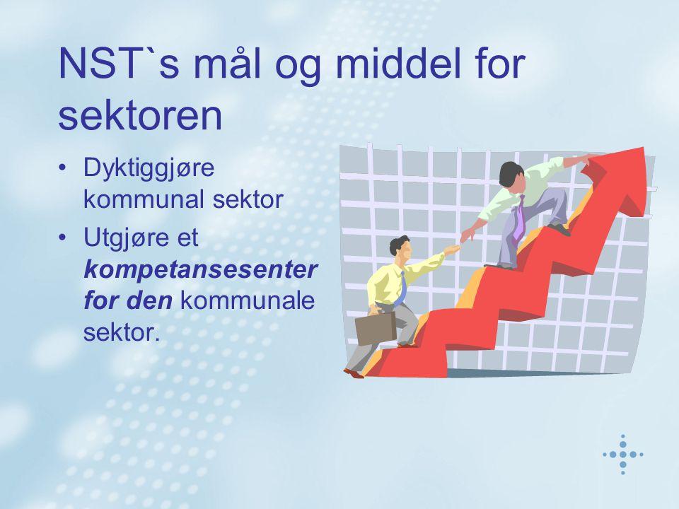 NST`s mål og middel for sektoren Dyktiggjøre kommunal sektor Utgjøre et kompetansesenter for den kommunale sektor.