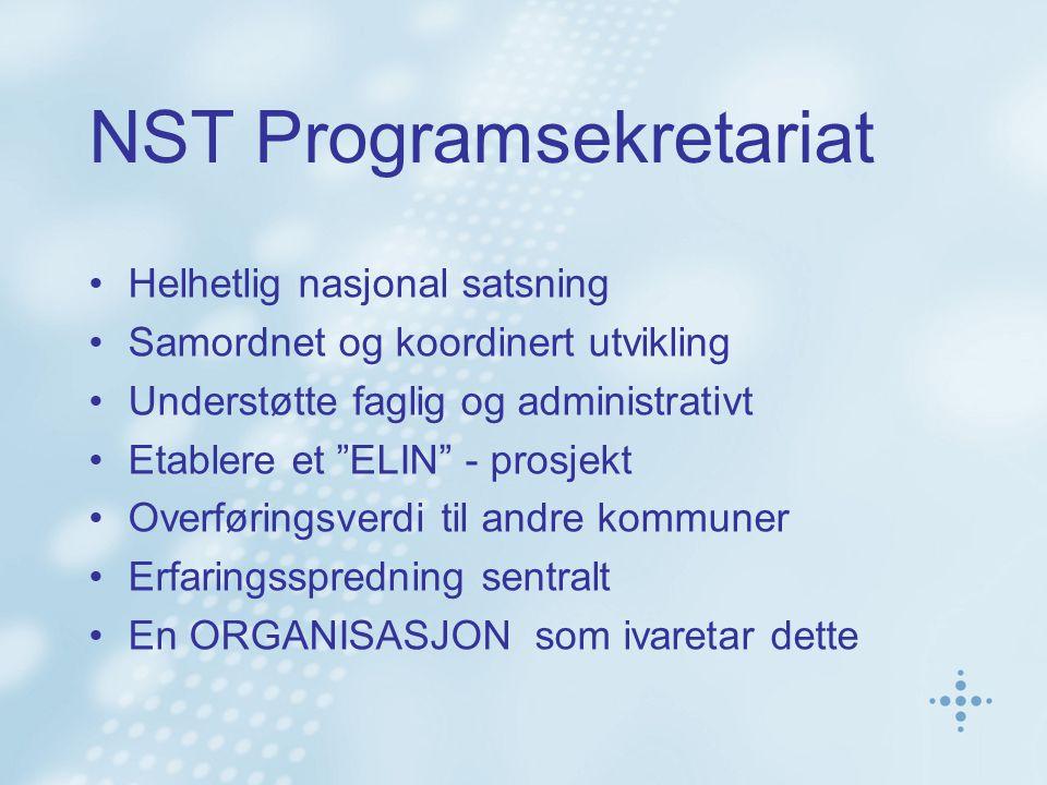 NST Programsekretariat Helhetlig nasjonal satsning Samordnet og koordinert utvikling Understøtte faglig og administrativt Etablere et ELIN - prosjekt Overføringsverdi til andre kommuner Erfaringsspredning sentralt En ORGANISASJON som ivaretar dette