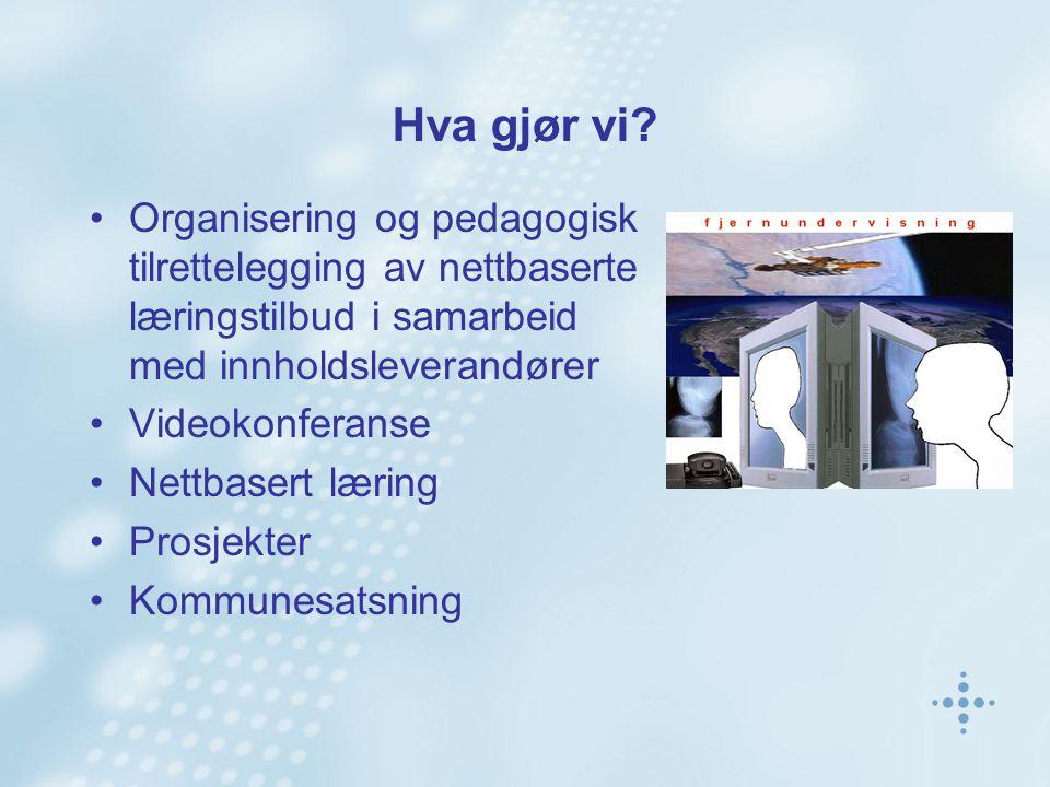 Hva gjør vi? Organisering og pedagogisk tilrettelegging av nettbaserte læringstilbud i samarbeid med innholdsleverandører Videokonferanse Nettbasert l