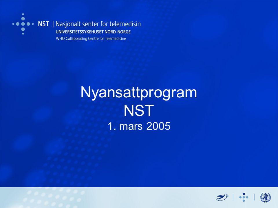 Nyansattprogram NST 1. mars 2005
