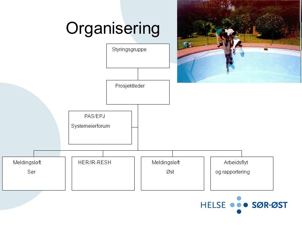 Organisering PAS/EPJ Systemeierforum Meldingsløft Sør HER/IR-RESHMeldingsløft Øst Arbeidsflyt og rapportering Prosjektleder Styringsgruppe
