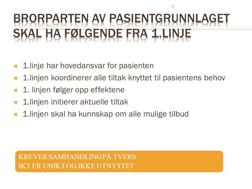 - 5 -  1.linje har hovedansvar for pasienten  1.linjen koordinerer alle tiltak knyttet til pasientens behov  1. linjen følger opp effektene  1.lin