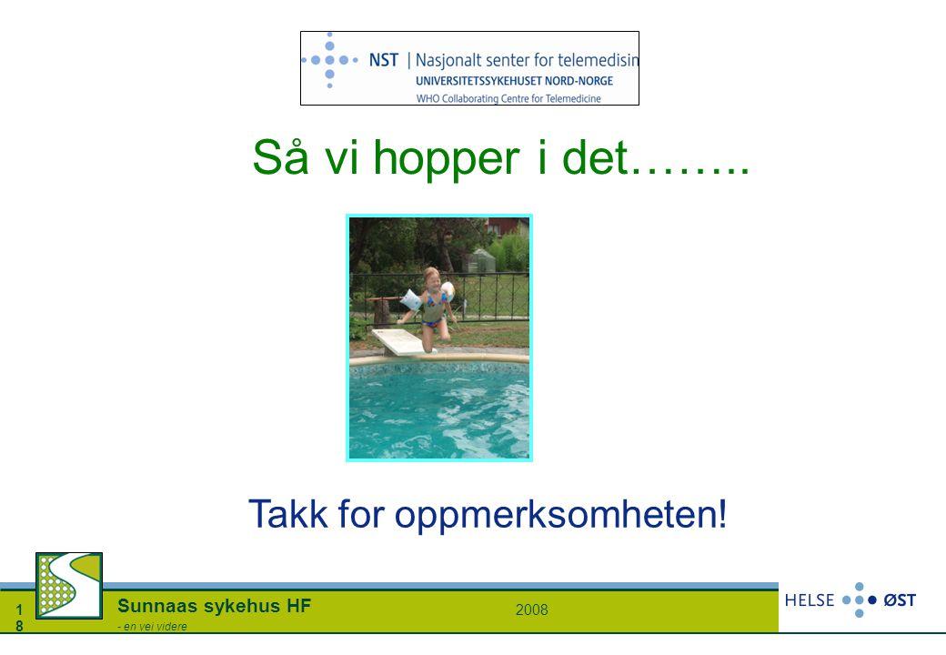 20081818 Sunnaas sykehus HF - en vei videre Så vi hopper i det…….. Takk for oppmerksomheten!