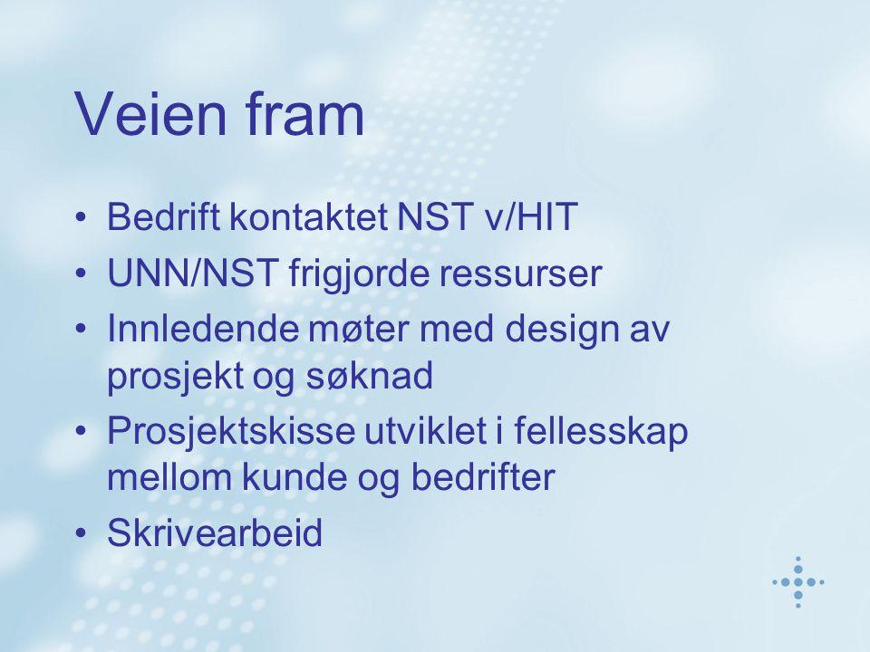 Veien fram Bedrift kontaktet NST v/HIT UNN/NST frigjorde ressurser Innledende møter med design av prosjekt og søknad Prosjektskisse utviklet i fellesskap mellom kunde og bedrifter Skrivearbeid